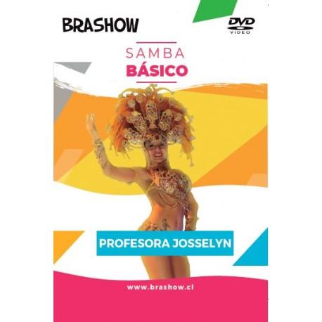 DVD Basico